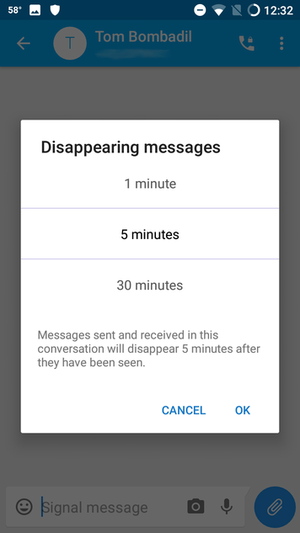 Signal Tb disappearing messages options.png